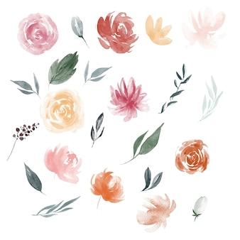 Kwiaty akwarelowe kwitną ilustracje liści i brunche