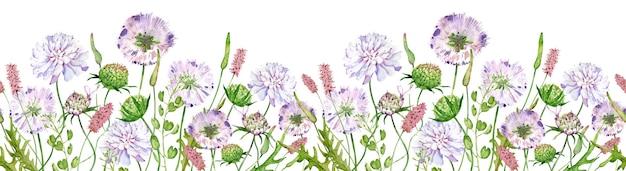 Kwiaty akwarelowe na białym tle nagłówek