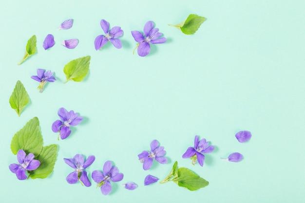 Kwiaty altówki z liśćmi na zielonym tle
