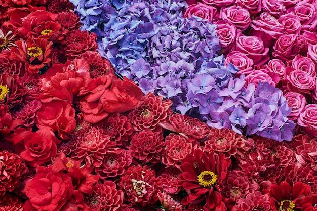 Kwiaty asteru, róży i hortensji. piękne różowe kwiaty. widok z góry