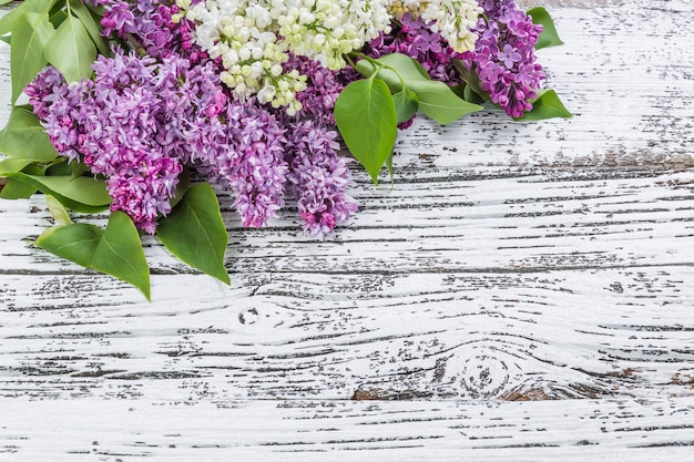 Kwiaty bzu na tle rustykalnym