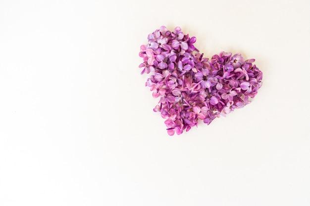 Kwiaty bzu w formie serca na białym tle