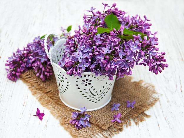 Kwiaty bzu