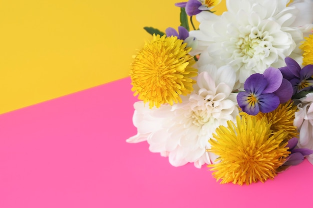 Kwiaty chryzantemy, mlecze, bratki na żółto-różowym tle. miejsce na kopię.