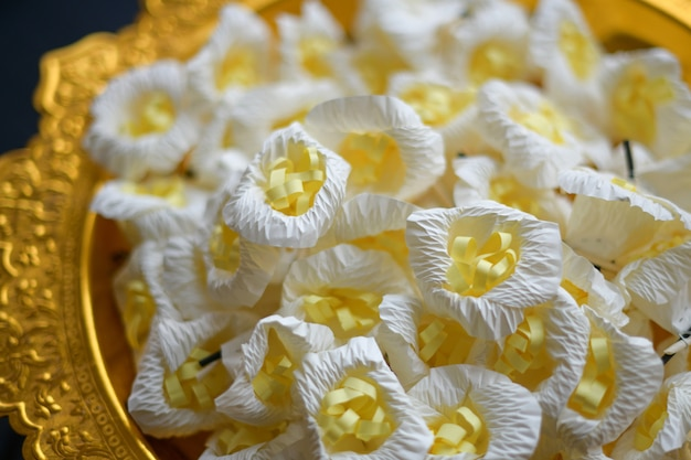 Kwiaty drzewa sandałowego dla szacunku buddyjski pogrzeb