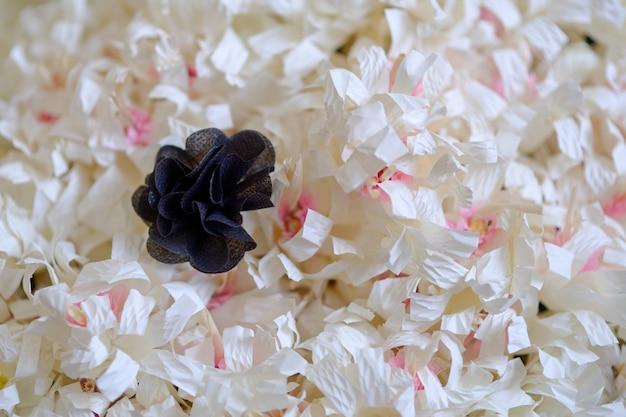 Kwiaty drzewa sandałowego