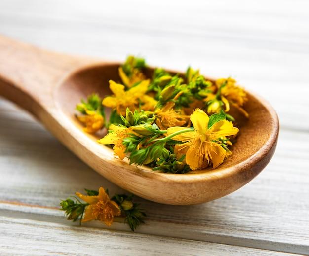 Kwiaty dziurawca zwyczajnego na drewnianej łyżce
