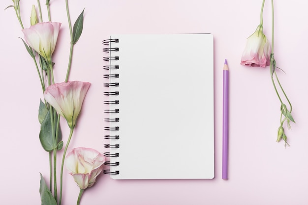 Kwiaty eustoma; puste spiralny notatnik z fioletowy ołówek na różowym tle