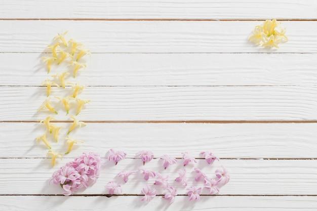Kwiaty hiacyntów na białej powierzchni drewnianej