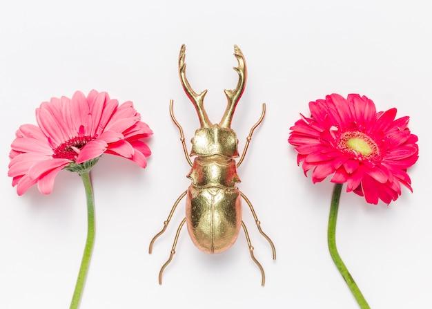 Kwiaty i chrząszcz