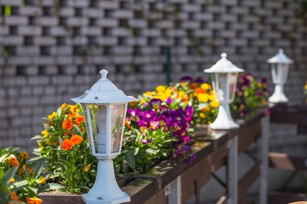 Kwiaty i latarnia w ogrodzie