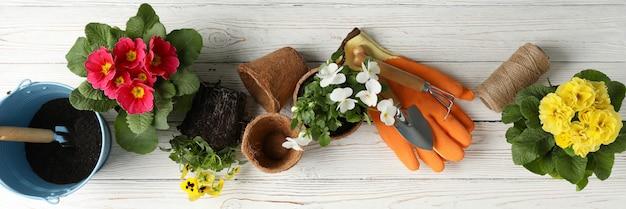 Kwiaty i narzędzia ogrodnicze na drewnianym stole, widok z góry
