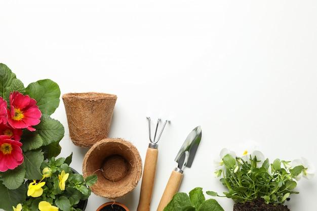 Kwiaty i ogrodnictw narzędzia na białym tle, odgórny widok