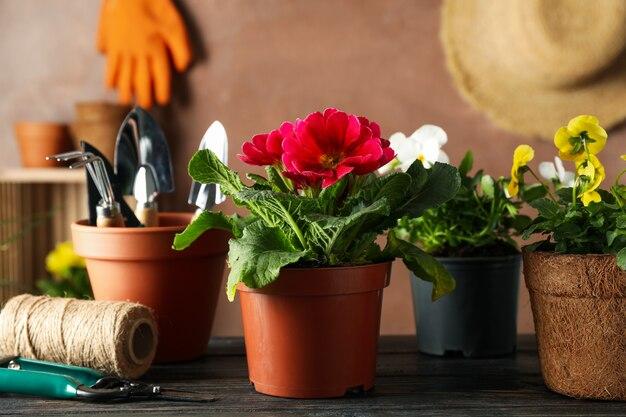 Kwiaty i ogrodowi narzędzia na drewnianym stole, zamykają up