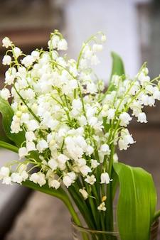 Kwiaty konwalii. kwitnące konwalie konwalie.