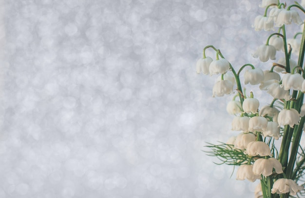 Kwiaty konwalii z bliska z selektywnym naciskiem na jasnoszarym tle piękno