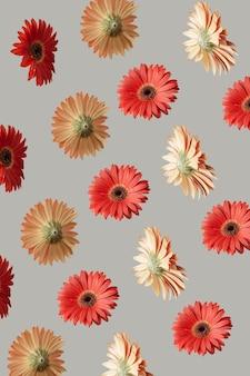 Kwiaty latające w powietrzu na szarym tle. koncepcja wiosny.