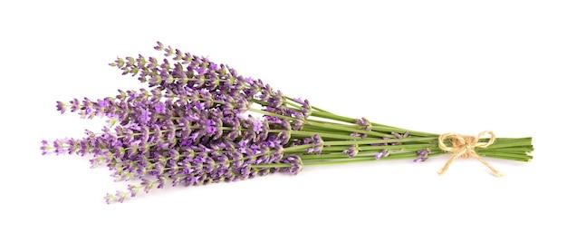 Kwiaty lawendy na białym tle bukiet lawendy lub kwiatów lawendy zioła lecznicze