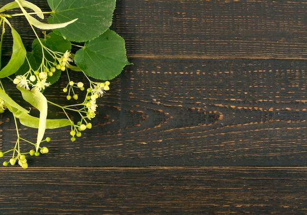 Kwiaty lipy na ciemnych szczegółach drewna