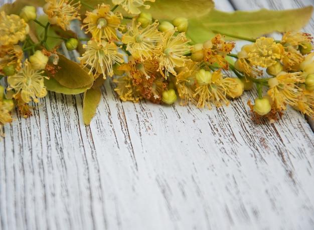 Kwiaty lipy