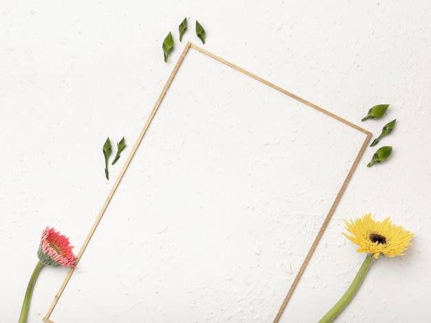 Kwiaty mniszka lekarskiego z pąkami kwiatowymi i skośną ramą