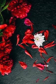 Kwiaty na czarnym tle. bukiet piwonii. idealnie leży na płasko z płatkami. pocztówka z wakacji szczęśliwych matek. pozdrowienia z okazji międzynarodowego dnia kobiet. pomysł na urodziny dla reklamy. zaproszenie.
