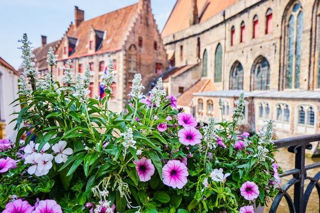 Kwiaty nad rzeką blisko dzwonnicy w bruges belgia