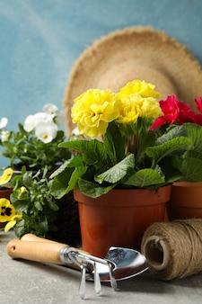 Kwiaty, narzędzia ogrodnicze i akcesoria na szarym stole, z bliska