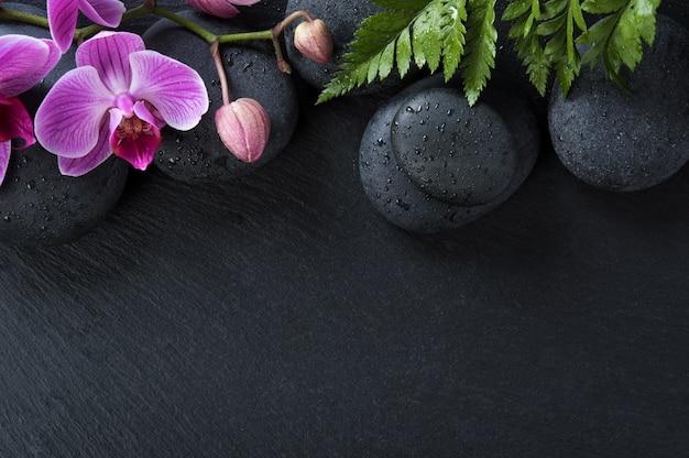 Kwiaty orchidei i kamienie bazaltowe na czarnym tle.