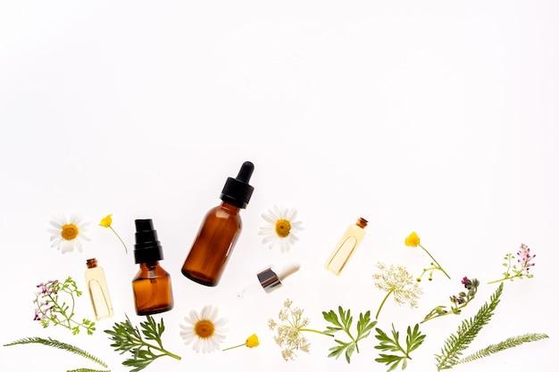 Kwiaty rumianku i butelki kosmetyczne olejku na białym tle, widok z góry koncepcja kosmetyków naturalnych lub medycyny alternatywnej