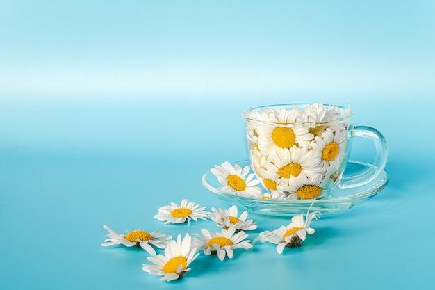 Kwiaty rumianku w przezroczystym szklanym kubku na spodku.