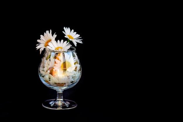 Kwiaty rumianku w szklanej filiżance