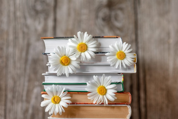 Kwiaty stokrotki i stos książek.