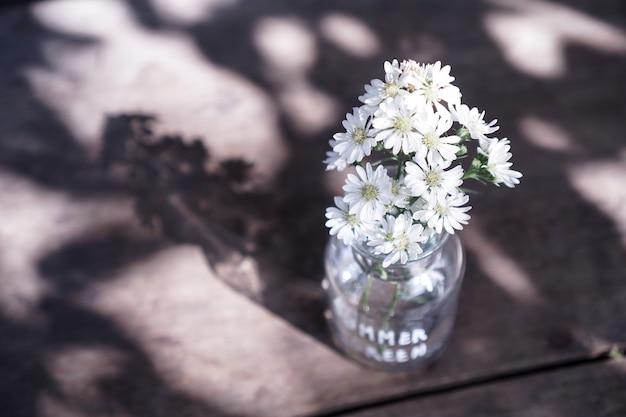 Kwiaty stokrotki w szklanym wazonie z długim ukośnym cieniem na drewnie