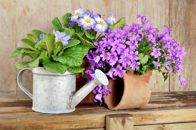 Kwiaty w doniczce na drewnianym stole