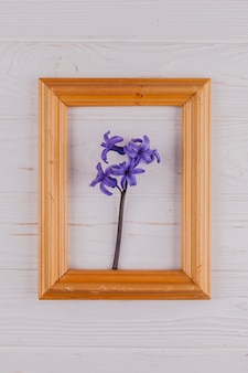 Kwiaty w ozdobnej ramce