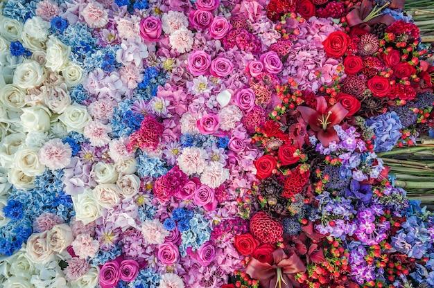 Kwiaty w tle. układanie kwiatów róż, chabrów, goździków i hortensji. kwietnik, widok z góry, miejsce. karta grettingowa, pocztówka.