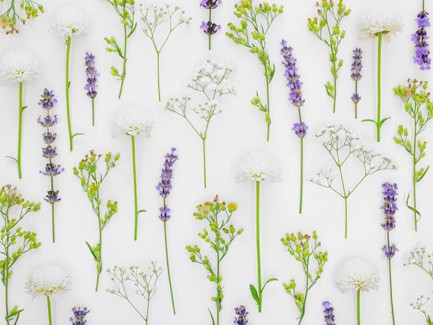 Kwiaty W Tle Premium Zdjęcia