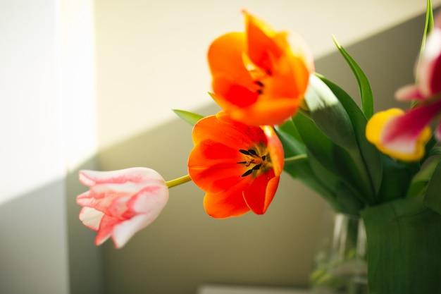 Kwiaty w wazonie. nie ma to jak w domu. słoneczny dzień. piękna wiosna