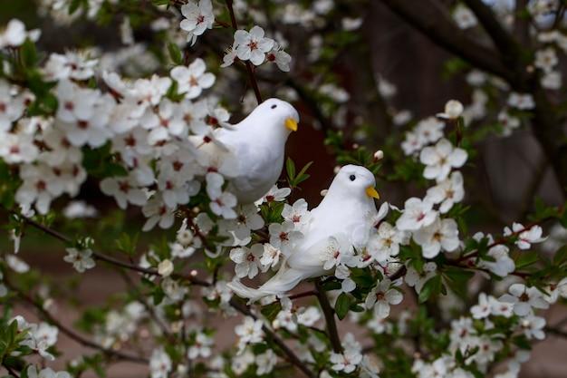 Kwiaty wiśni w ogrodzie wiosną i dwa białe ptaki na drzewie