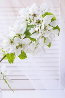 Kwitnąca gałąź jabłoni na jasnym tle żaluzji i przezroczystych zasłon.