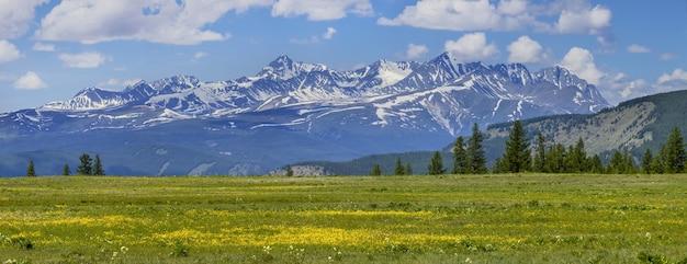Kwitnąca łąka i ośnieżone szczyty
