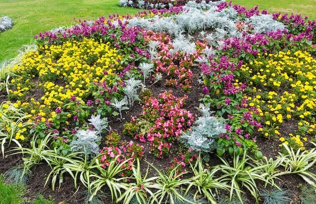 Kwitnące kolorowe kwietniki w jesiennym parku miejskim