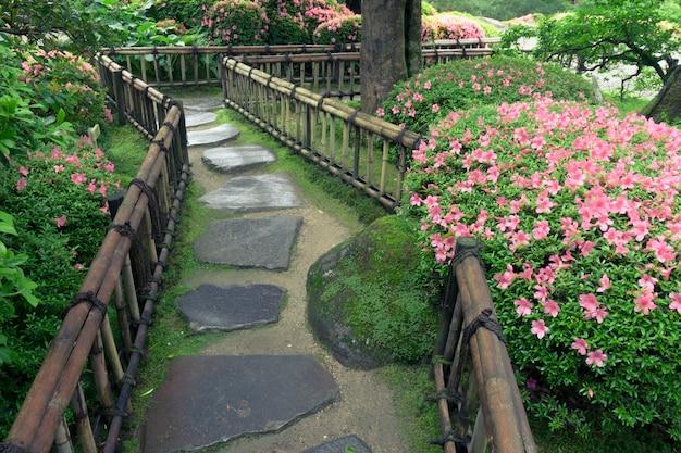 Kwitnące krzewy azalii i mokra kamienna droga w ogrodzie zen