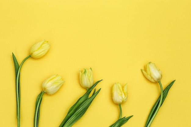 Kwitnące kwiaty tulipanów na żółtym tle. bukiet kwiatów jako wiosenny prezent na dzień matki lub kobiety. widok z góry.