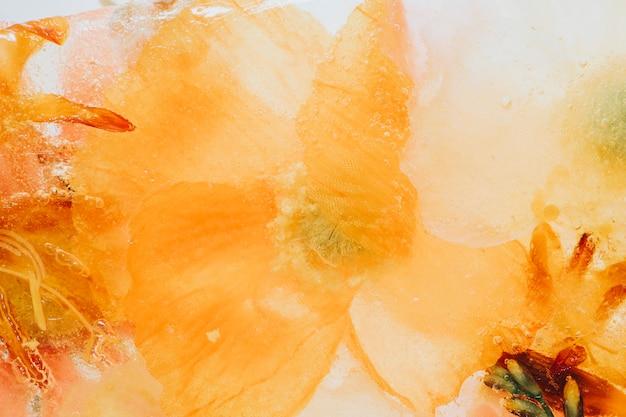 Kwitnące pomarańczowe naturalne tło kwiatu forsycji