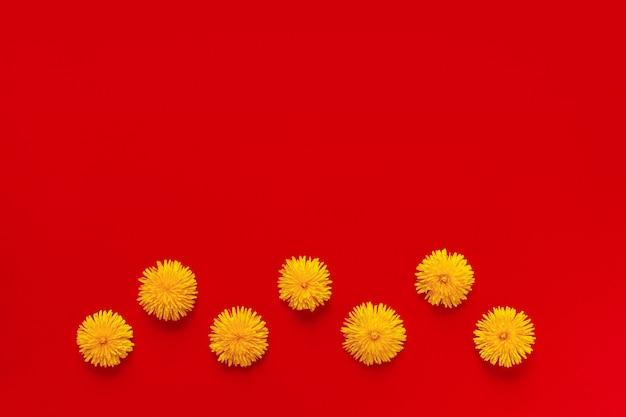 Kwitnące żółte kwiaty mniszka lekarskiego w ramie formularza na czerwonym tle papieru płasko leżał z miejsca na kopię