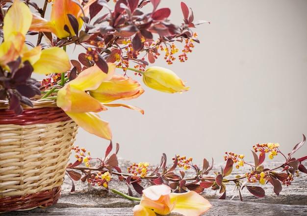 Kwitnący berberys pospolity i tulipany w koszu na drewnianym stole