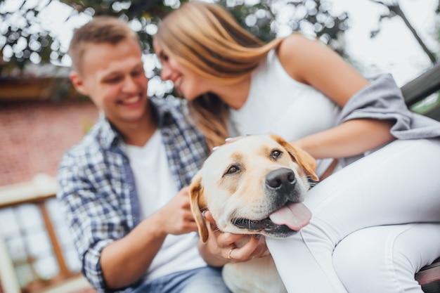 Labrador ze szczęśliwymi właścicielami. skoncentruj się na psie.
