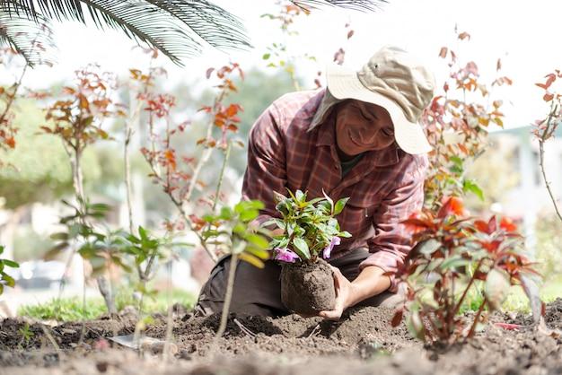 Łaciński mężczyzna sadzący kwiaty w pięknym zielonym ogrodzie